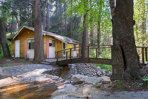 Debbie Baker Realtor Homes And Cabins For Sale In Crestline Ca